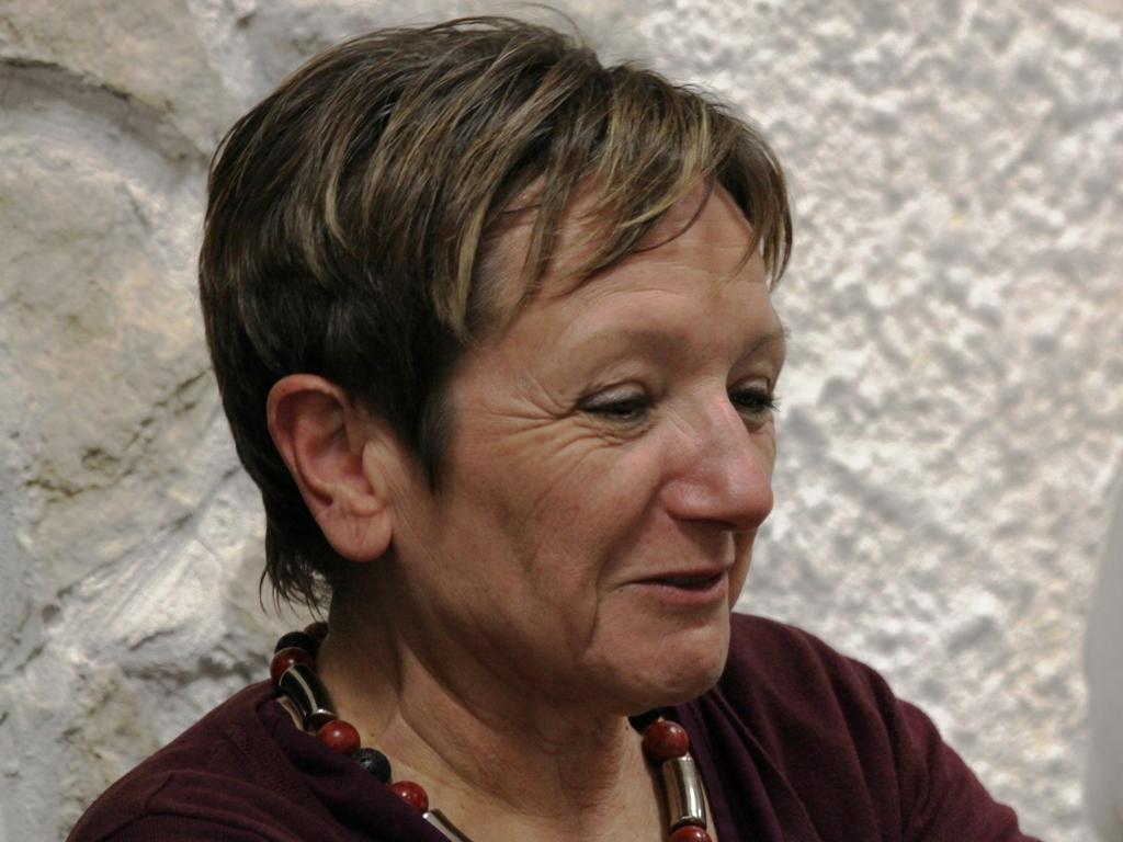 Auteur Didier V.